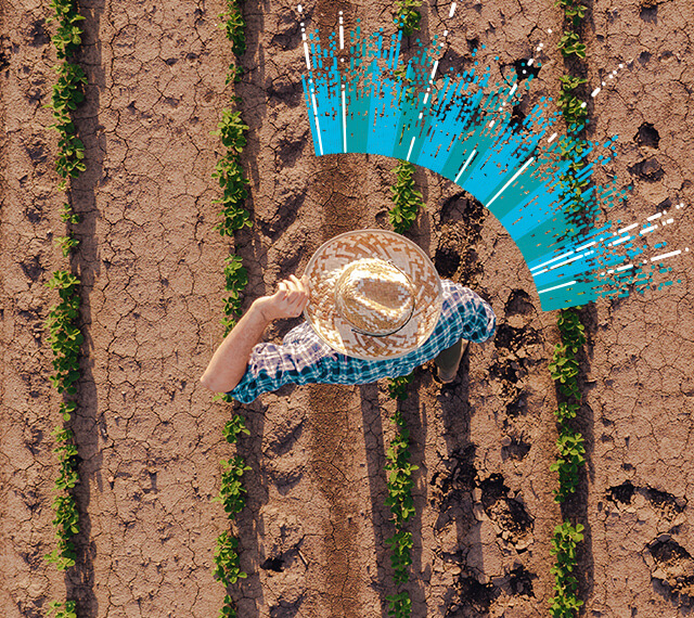 Man on the agriculture field